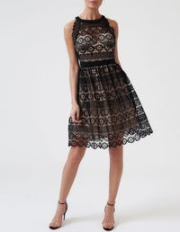 Black and Nude High Neck Lace Embroidered Skater Dress
