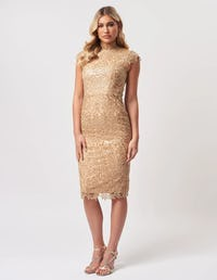 Lime Sequin Floral Lace Embroider Midi Dress